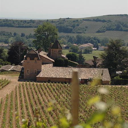 Der Blick auf Château de Fuissé