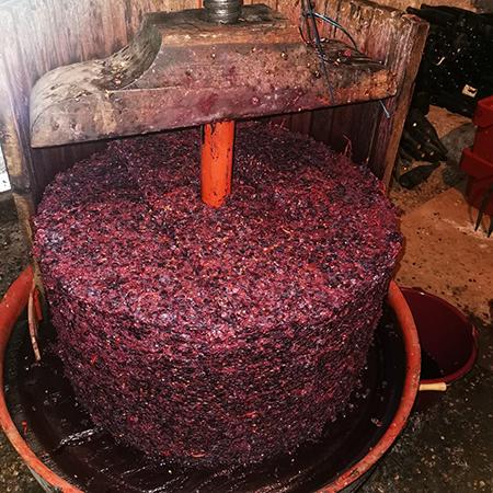 Pinot Noir Trester
