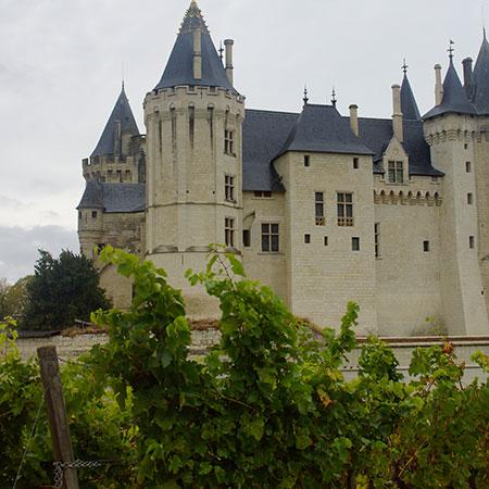 Schloss Saumur & Weinberg