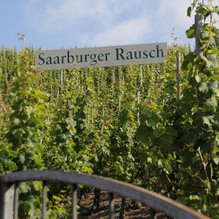Saarburger Rausch