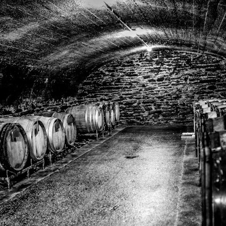 Ein Blick in den Keller